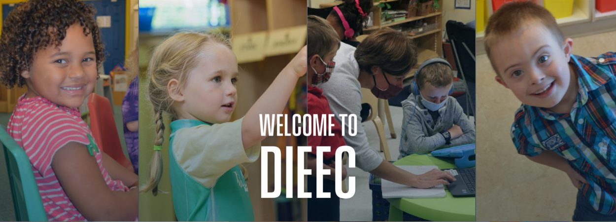 Welcome to DIEEC