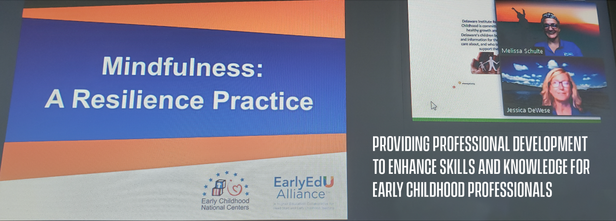 Providing professional development to enhance skills and knowledge for early childhood professionals